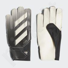 Pirštinės vartininkams Adidas X Lite CW5610