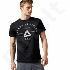Marškinėliai Reebok Stamp Graphic Tee M AY1047