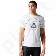 Marškinėliai Reebok Stamp Graphic Tee M AY1050