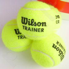 Teniso kamuoliukas Wilson Team Trainer 2015r. 1 vnt