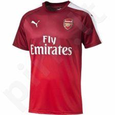 Marškinėliai futbolui Puma Arsenal Football Club Stadium M 749143011