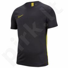 Marškinėliai futbolui Nike Dry Academy SS M AJ9996-060