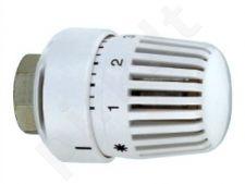Galva termostatinė 4031