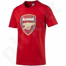 Marškinėliai Puma Arsenal Football Club Fan Tee M 749297011