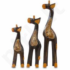 3 Žirafos 109052