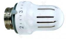 Galva termostatinė 4033