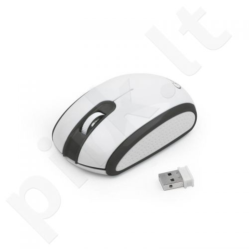 Gembird Wireless optical mouse MUSW-105, 1200 DPI, nano USB, black-white