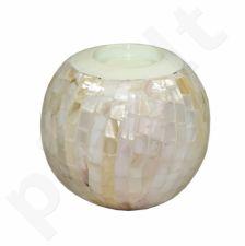 Žvakidė 103748