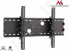 Maclean MC-521B  TV Sieninis Mount laikiklis LCD LED Plasma 37'' - 70'' 75kg