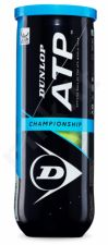 Lauko teniso kamuoliukai ATP CHAMPIONSHIP 3-tube