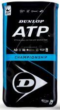 Lauko teniso kamuoliukai ATP CHAMPIONSHIP 2x4-tube