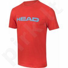 Marškinėliai tenisui Head Transition Ivan T-shirt M 811596-FLAQ