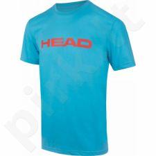 Marškinėliai tenisui Head Transition Ivan T-shirt M 811596-AQFL