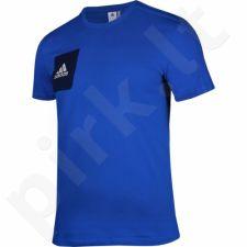 Marškinėliai Adidas Tiro17 Tee M BQ2660
