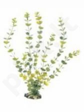 Plastikinis augalas PLANT CLASSIC HYDROCOTYLE LG