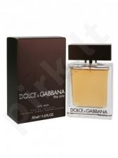 Dolce & Gabbana The One, tualetinis vanduo (EDT) vyrams, 50 ml