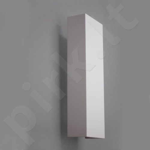Sieninis šviestuvas gipsinis 10-BELKA PIONOWA