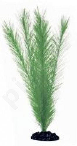 Plastmasinis augalas BLYXA l.didelis