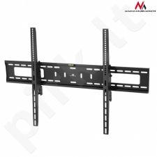 Maclean MC-750 Sieninis laikiklis TV 60-100'' max vesa 600x900 70kg