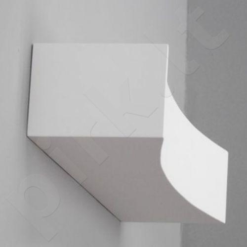 Sieninis šviestuvas gipsinis 10-KORYTKO 50 WKLĘSŁE PEŁNE