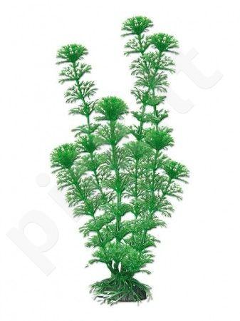Plastikinis augalas CABOMBA vidutinis 18 cm