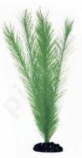 Plastikinis augalas BLYXA didelis