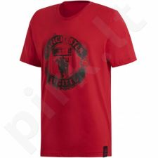 Marškinėliai Adidas Manchester United DNA Graphic Tee M DP2332
