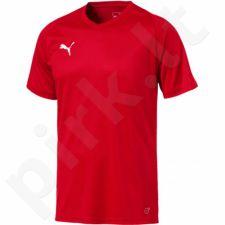 Marškinėliai Puma Liga Jersey Core M 703509 01