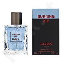 Iceberg Burning Ice, 100ml, tualetinis vanduo vyrams