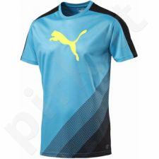 Marškinėliai futbolui Puma evoTRG Cat Graphic M 654771521