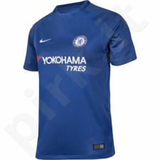 Marškinėliai Nike Chelsea Londyn Football Club 2017/2018 Junior 905541-496