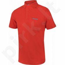 Marškinėliai tenisui Head Transition Bjorn Polo Shirt M 811586-FLAQ