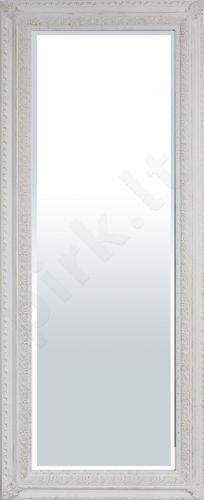 Veidrodis 93961