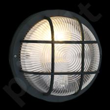 Sieninis / lubinis šviestuvas EGLO 88803 | ANOLA