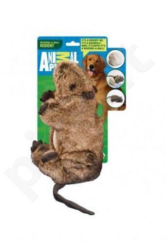 Animal Planet  Žiurkė pliušinė
