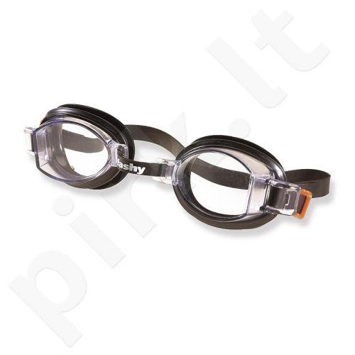 Plaukimo akiniai KIDS STANDARD 4122