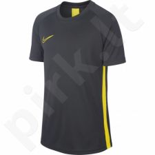 Marškinėliai futbolui Nike B Dry Academy SS Junior AO0739-060