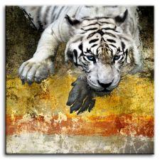Paveikslas G93241 Tigras 80x80cm