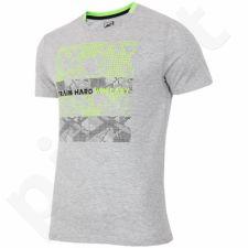 Marškinėliai 4f M H4L17-TSM009 pilkas