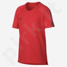 Marškinėliai futbolui Nike Breathe Squad TOP SS 18 Jr 916117-696