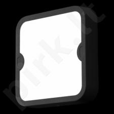 Sieninis / lubinis šviestuvas EGLO 95082 | ALFENA-S