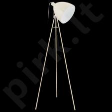Grindinis šviestuvas EGLO 49338 | DUNDEE