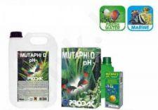 PRODAC MUTAPHI << D>> pH- priemonė vandens pH lygiui reguliuoti 100ml