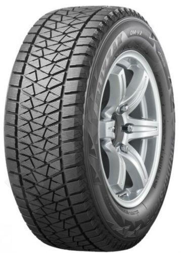 Žieminės Bridgestone BLIZZAK DM-V2 R20