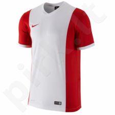 Marškinėliai futbolui Nike PARK DERBY M 588413-106