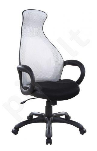 Darbo kėdė DOLPHIN
