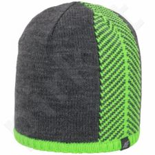 Kepurė  4F M C4Z15-CAM011 pilkas