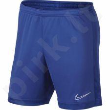 Šortai futbolininkams Nike Dry Academy M AJ9994-480