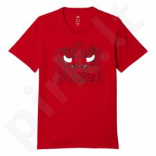 Marškinėliai Adidas Tee 3 Chicago Bulls M AP5726