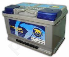 Akumuliatorius BAREN POLAR PLIUS 75Ah 730A
